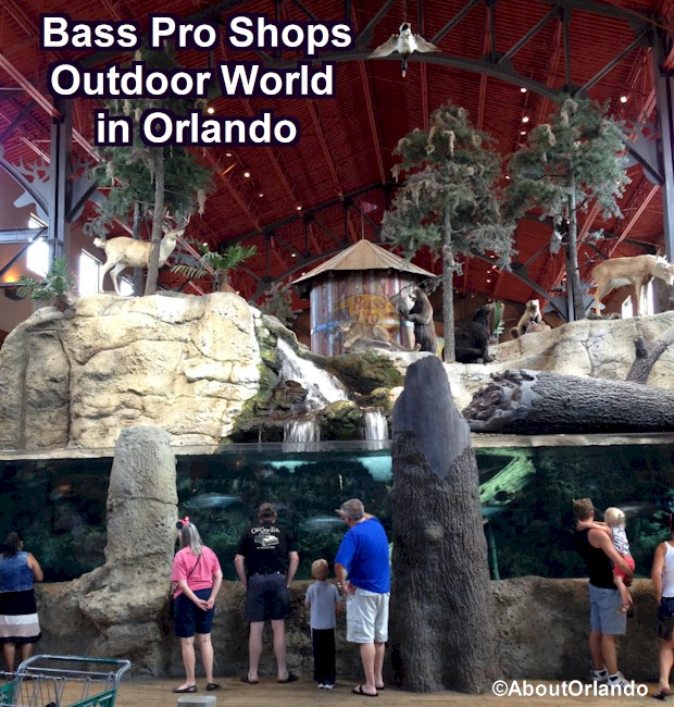 Best shops in Orlando includes Bass Pro Shops Outdoor World at Artegon Market on International Drive.  Bass Pro Shops Orlando Review from AboutOrlando.com