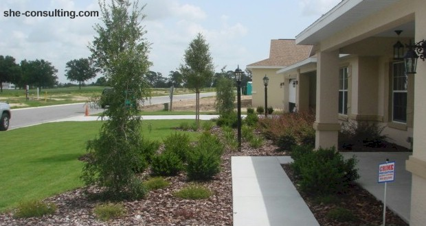 Setting up green foundations in Orlando yards. MORE: AboutOrlando.com