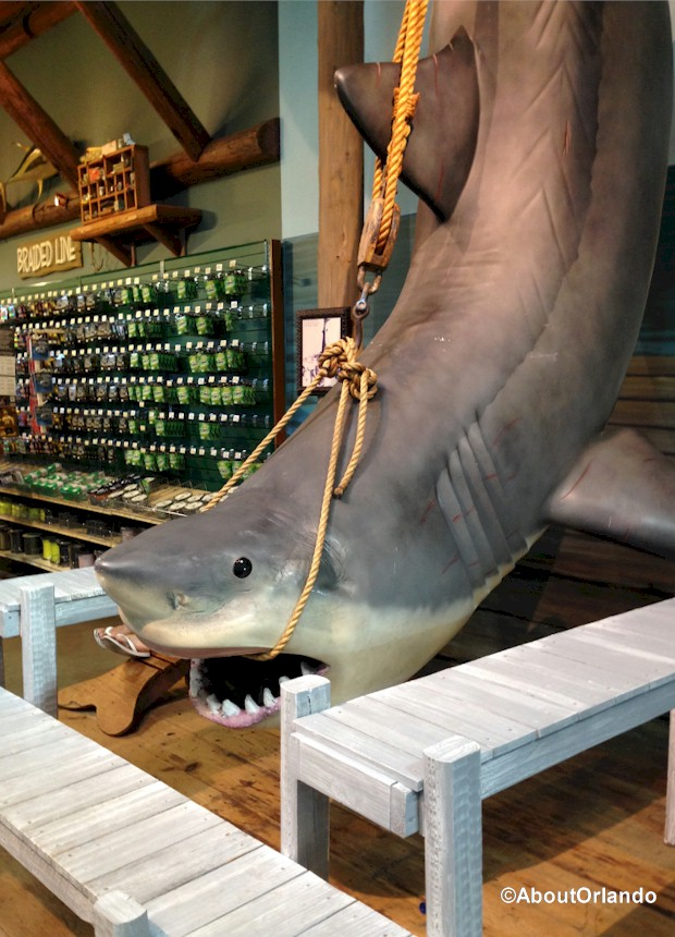 Replica of Tiger Shark at Bass Pro Shops Orlando