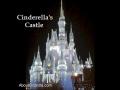 cinderellas-castle-night-jpg