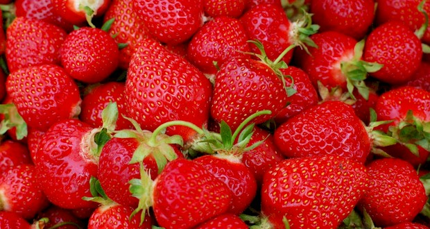 All things strawberry at Plant City's annual Strawberry Festival